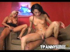 Busty Trannies Interracial Threesome