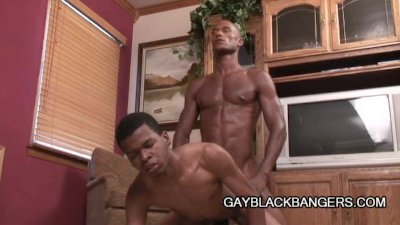 Black Men Become Gays