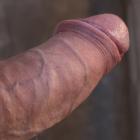 proteeus's profile image