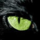 hybridt's profile image