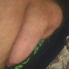 pup72's profile image