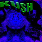 brkokkk's profile image