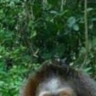 udip29's profile image